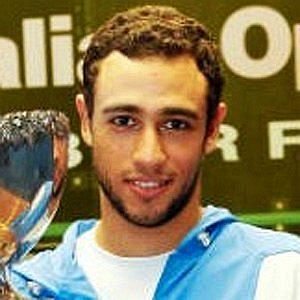 Age Of Ramy Ashour biography