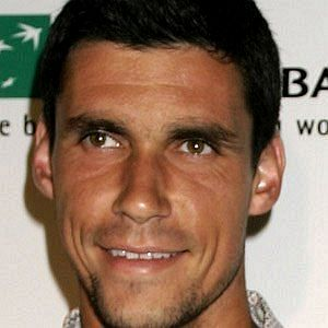 Age Of Victor Hanescu biography