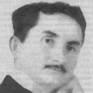 Vojislav Ilic bio