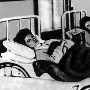 Typhoid Mary bio